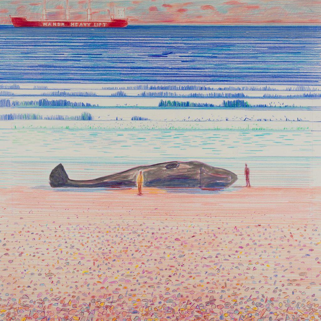 Beached Whale 2018 © Niall Naessens