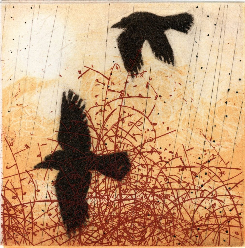 Briars and Crows etching