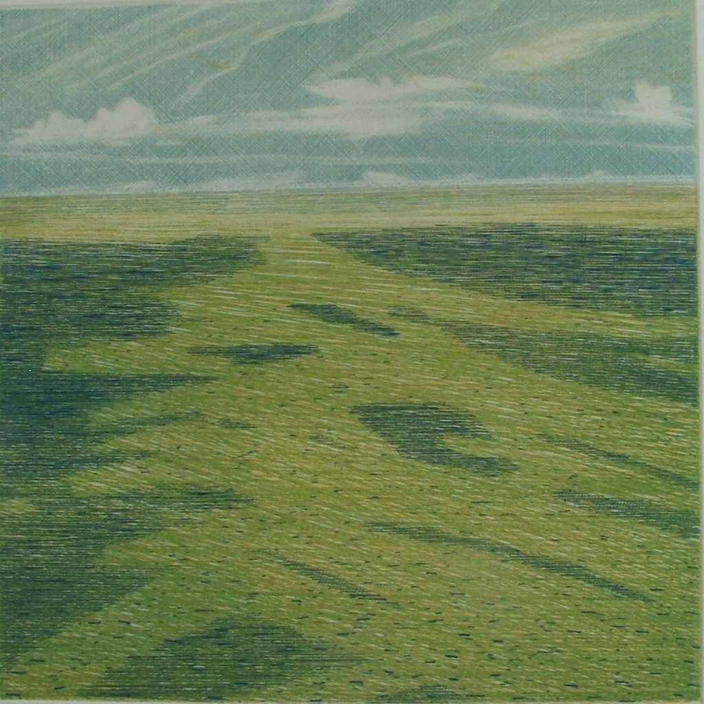 The Irish Sea , Green 2008 etching on Zerkall 350g, 30 x 30 cm Niall Naessens
