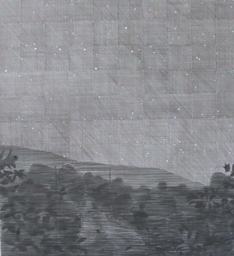 Ursa Major 2012 Graphite on Somerset 600g, 96 x 108 cm. Niall Naessens